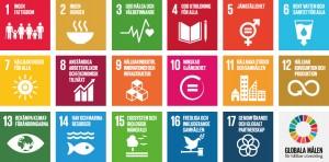 SDG_sv