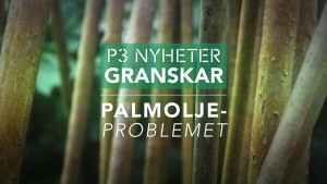 P3-palmolja